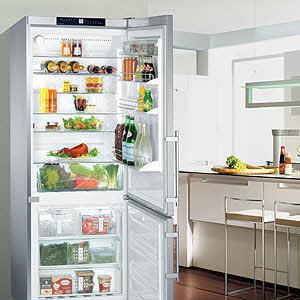 Liebherr 30 inch freestanding refrigerator