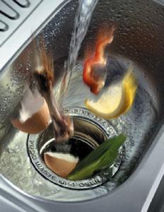 in-sink2