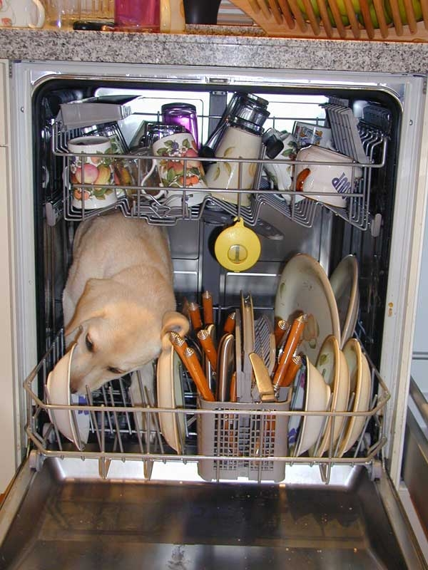 A post on cleaning the dishwasher was a top dog in 2011.