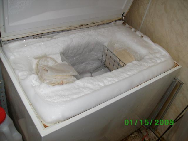 How To Defrost A Freezer In 10 Easy Steps Warner